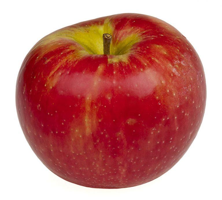 851px-Honeycrisp-Apple